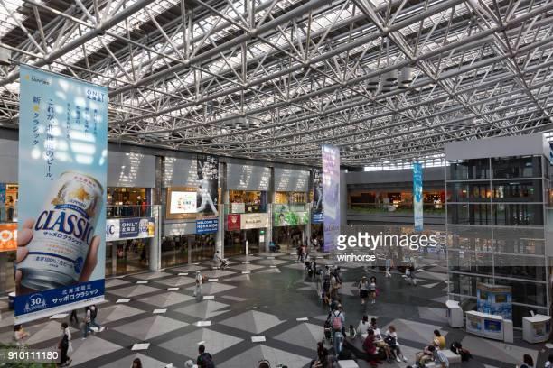 New Chitose Airport in Hokkaido, Japan