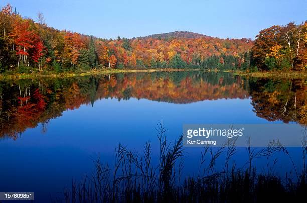 New England Autumn Pond