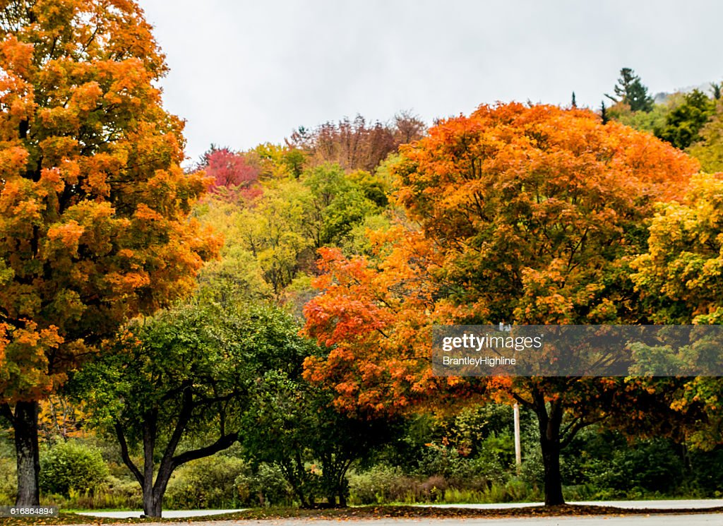 New England Colors : Stock Photo