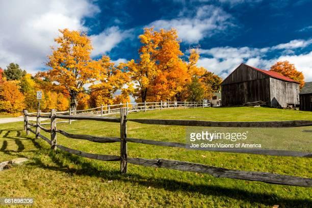 New England farm with Autumn Sugar Maples Vermont