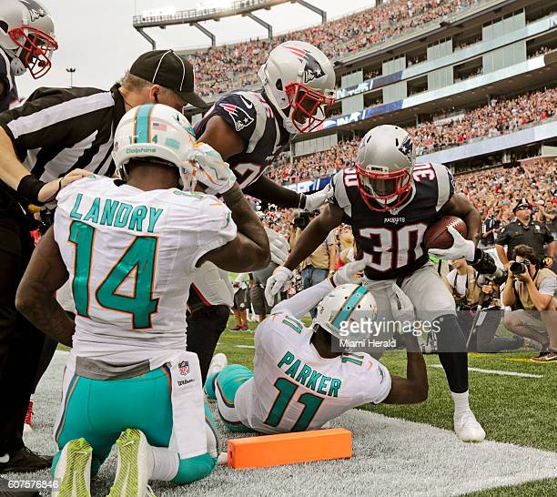 New England Patriots free safety Duron Harmon reacts after intercepting the ball intended for Miami Dolphins wide receiver DeVante Parker in the...