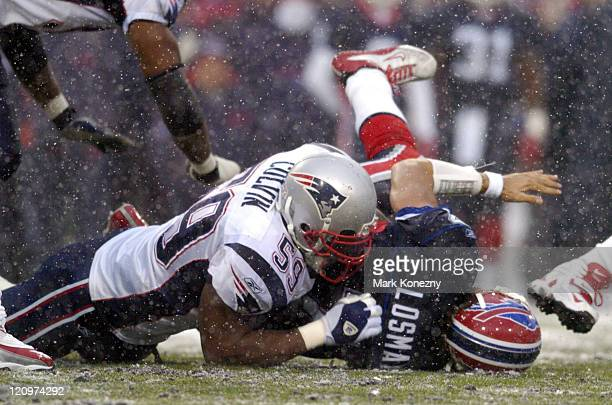 New England Patriots linebacker Rosevelt Colvin makes a sack on Buffalo Bills quarterback JP Losman in a game at Ralph Wilson Stadium in Orchard Park...