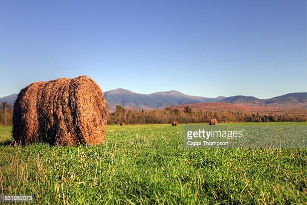new hampshire farming landscape - cappi thompson stock pictures, royalty-free photos & images