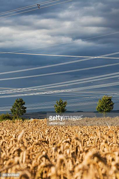 New high voltage overhead power lines of transmission system operator 50Hertz