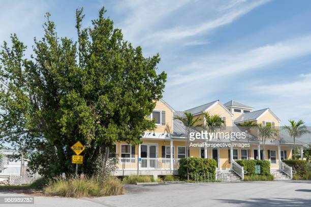new houses with palm trees - florida landscaping stock pictures, royalty-free photos & images