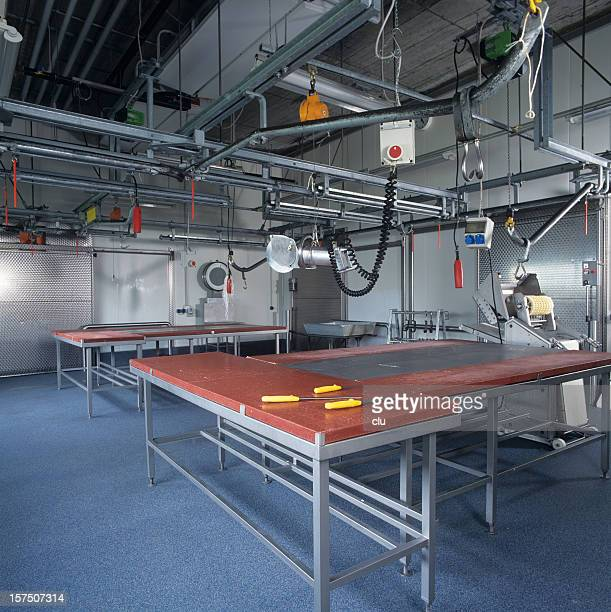 New industrial slaughterhouse with production tables and machines