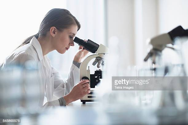 usa, new jersey, female lab technician analyzing sample through microscope - place of research stock pictures, royalty-free photos & images