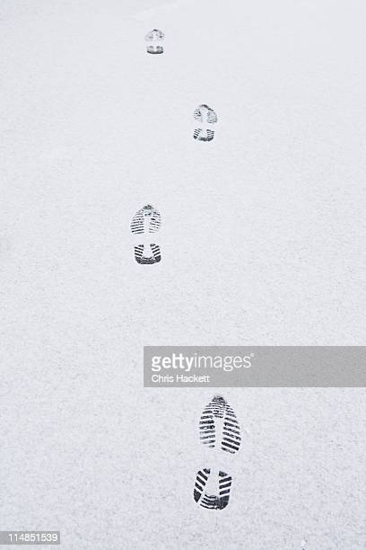 usa, new jersey, footprints on snow - hackett stock photos and pictures