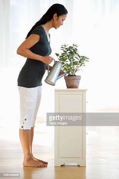USA, New Jersey, Jersey City, Woman watering plant in home