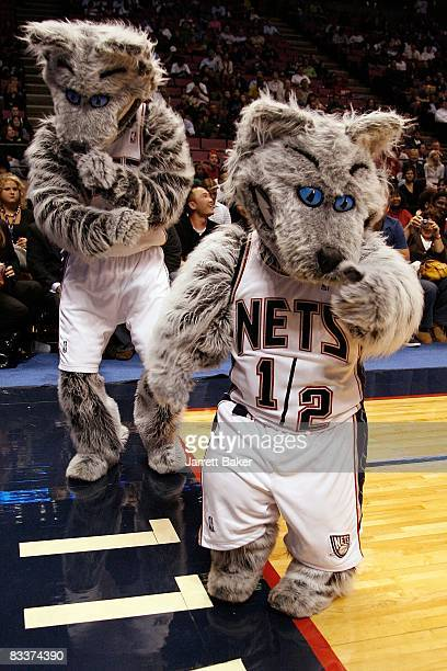 cheaper 14f26 81d87 New Jersey Nets Mascot Sly Premium Pictures, Photos ...