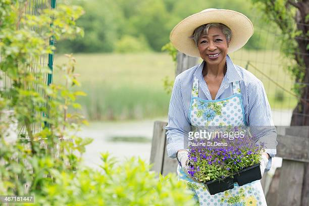 usa, new jersey, old wick, portrait of senior woman working in garden - gray hat stock pictures, royalty-free photos & images