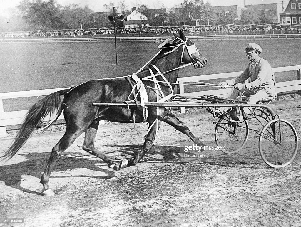 USA New Jersey Trenton: Horse race At the harness racing week on the