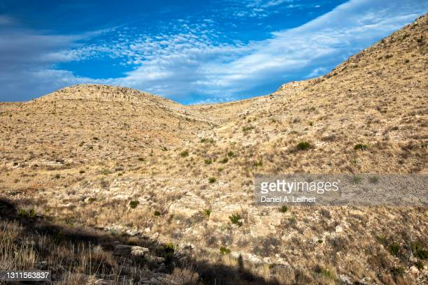 new mexico desert landscape at carlsbad caverns national park - chihuahua desert stock pictures, royalty-free photos & images
