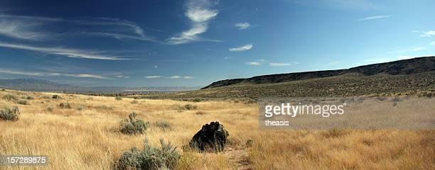 Neue mexikanische Wüstenlandschaft Panorama