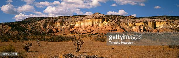 """""""usa, new mexico, ghost ranch, near abiquiu, red rock formation with cholla cactus and sagebrush"""" - timothy hearsum stockfoto's en -beelden"""