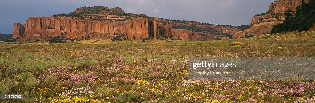 USA, New Mexico, Red Valley, Tohdildon Wash, near Navajo, red rock formations : Stock Photo