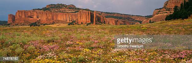 USA, New Mexico, Red Valley, Tohdildon Wash, near Navajo, red rock formations