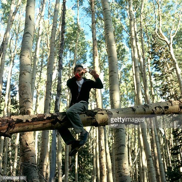 USA, New Mexico, Santa Fe, man sitting on aspen tree trunk