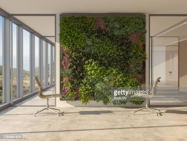 new office with vertical garden - umweltschutz stock-fotos und bilder