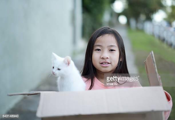 new pet kitten