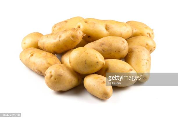 new potato isolated on white background close up - prepared potato stock pictures, royalty-free photos & images