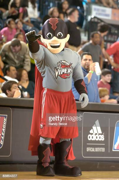 New Rio Grande Valley Vipers mascot Venom makes his debut during opening night of NBA DLeague action against the Tulsa 66ers on November 28 2008 at...