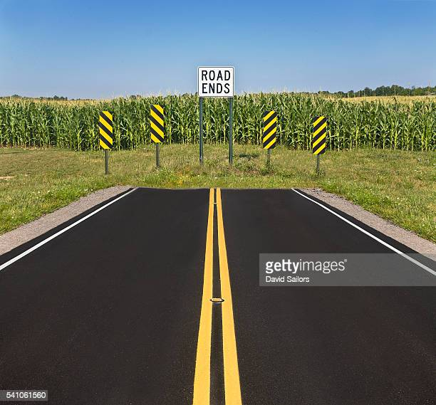 New road ending at a corn field