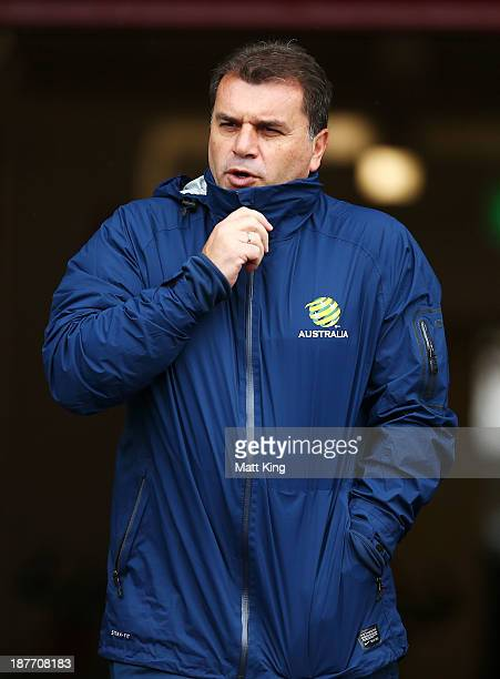 New Socceroos head coach Ange Postecoglou walks onto the field during an Australian Socceroos training session at WIN Jubilee Stadium on November 12...