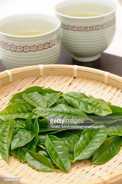 New Tea Leaves