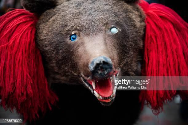 new year bear dancing festival, comanesti, moldova, romania - dancing bear photos et images de collection