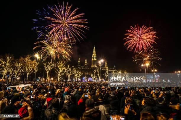 new year fireworks in Vienna
