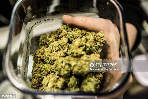 New Year's Day is the first day of the legalization of recreational marijuana sales in California. Cathedral City Collective Care in Riverside County...