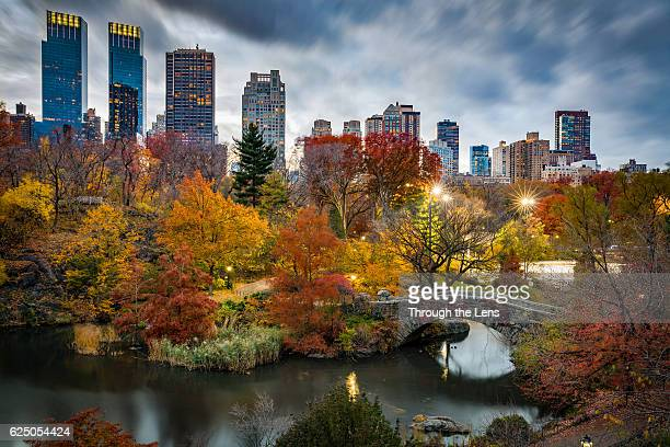 new york central park during autumn - central park stock pictures, royalty-free photos & images
