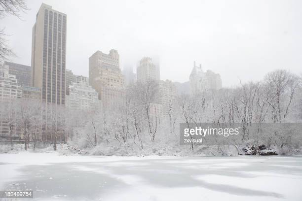 New York Central Park in winter, dusted with snow