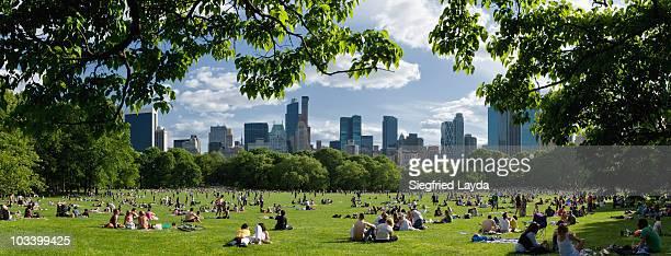 new york central park - central park fotografías e imágenes de stock
