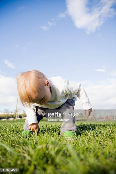 usa, new york city, baby boy (0-1 years) on grass - 0 11 monate stock-fotos und bilder