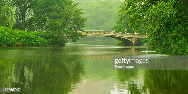 USA, New York City, Central Park, Bridge in central park