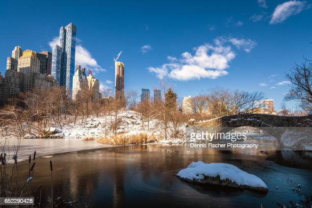 new york city central park in winter - february stock pictures, royalty-free photos & images