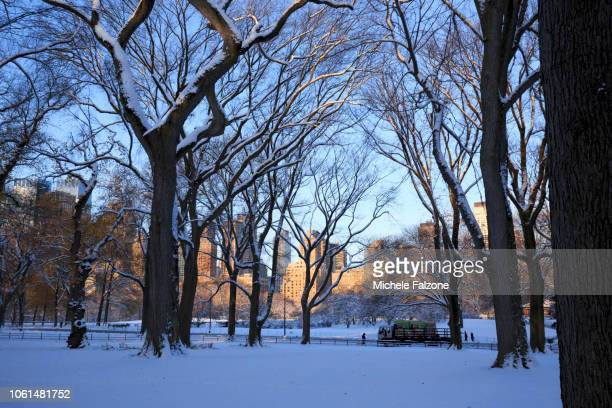 New York City, Central Park