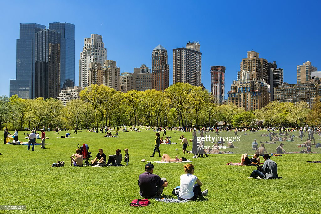 New York City, Central Park : Stock Photo