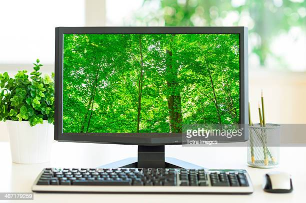 usa, new york city, computer screen showing greenery - desktop pc stock pictures, royalty-free photos & images