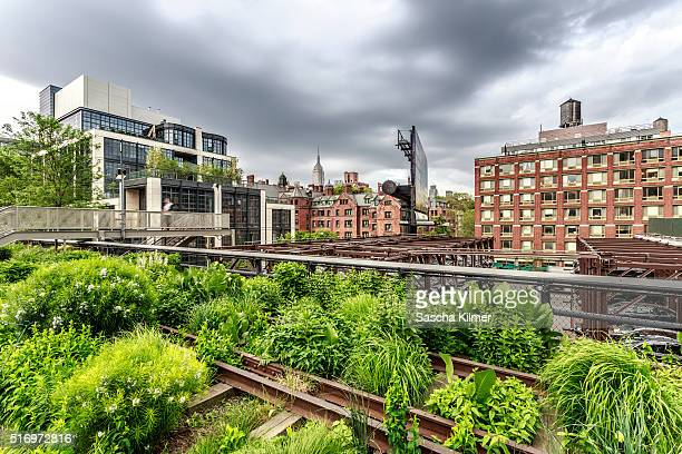 new york city from highline park - chelsea new york stock pictures, royalty-free photos & images