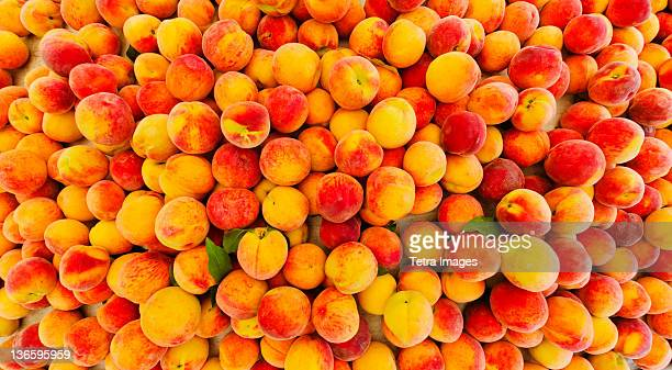 usa, new york city, heap of peaches - peach stock photos and pictures