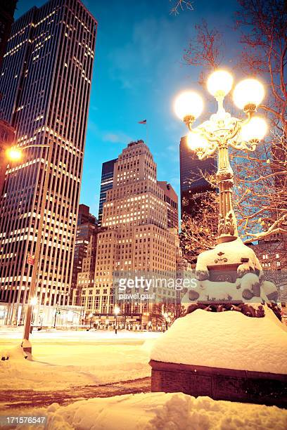 New York City in snow