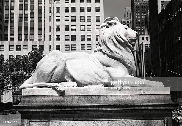 usa, new york city, lion statue outside new york public library - new york public library stock pictures, royalty-free photos & images
