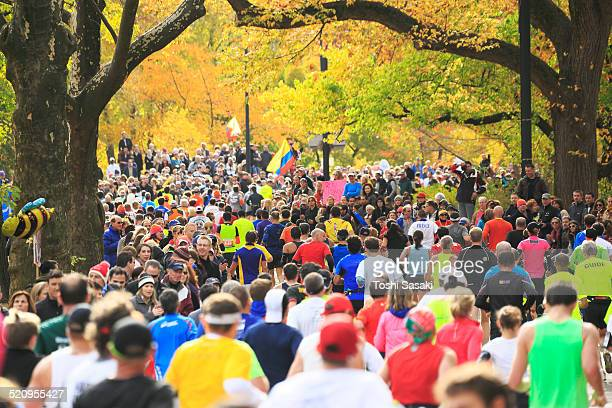 New York City Marathon runners under autumn trees.