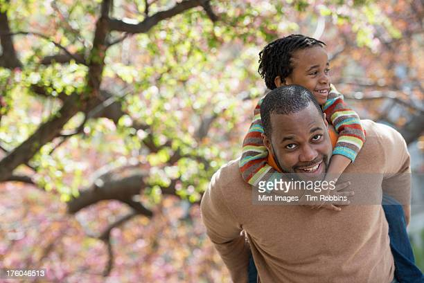 A New York city park in the spring. Sunshine and cherry blossom. A father carrying his son on his shoulders.