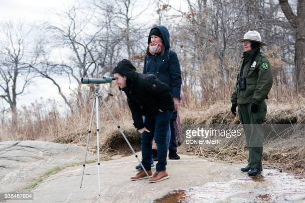 New York City Park Ranger A Duran helps wildlife enthusiasts view seals March 10 2018 near Orchard Beach in New York as the explorers spotted Harbor...