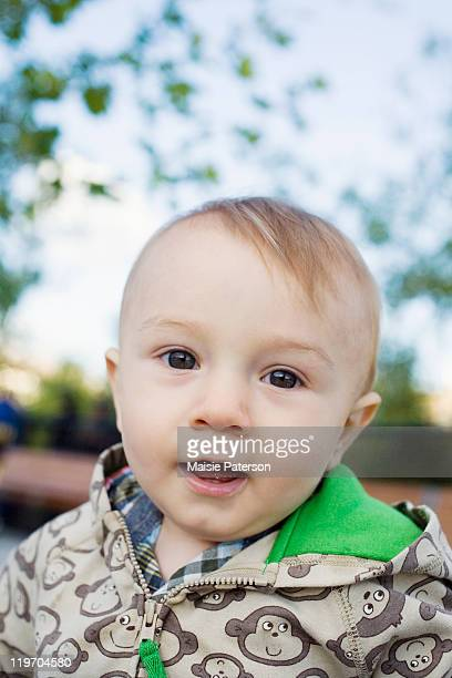 usa, new york city, portrait of baby boy (0-1 years) - 0 11 monate stock-fotos und bilder