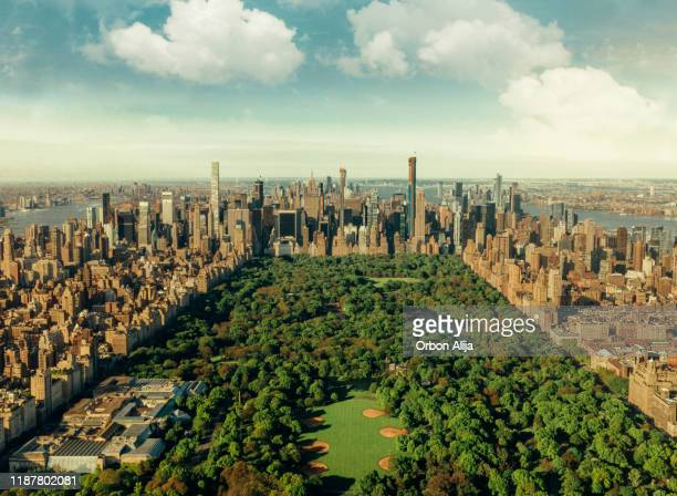 new york city skyline with central park - central park stock pictures, royalty-free photos & images